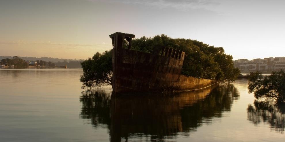 SS Ayrfield-Homebush-Bay-Australia