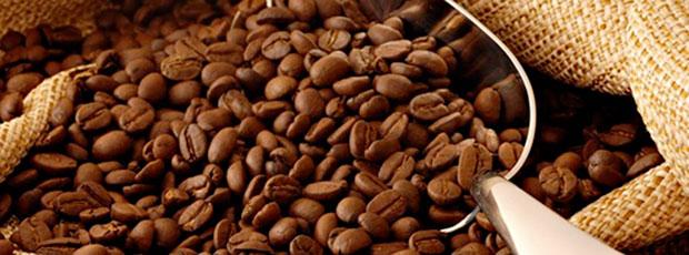 Le café Kopi Luwak est le café le plus chère au monde ?