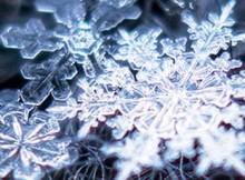 flocon-neige-thumbnail