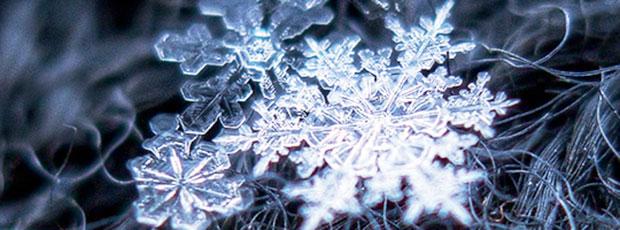 Images insolites : Flocon de neige