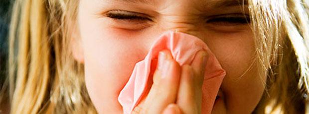 Le rhume des foins touche plus d'un quart de la population mondiale ?