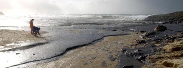 Marée noire de BP: ce qu'on ne nous dit pas !