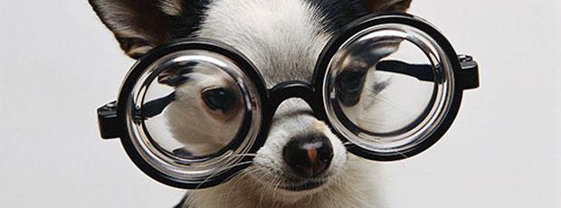 Les verres de lunettes ne sont pas en verre ?